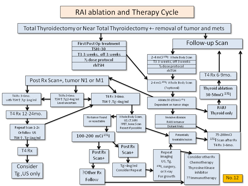RAI Ablation and Therapy for Thyroid Cancer - Thyroid Disease Manager Algorithms