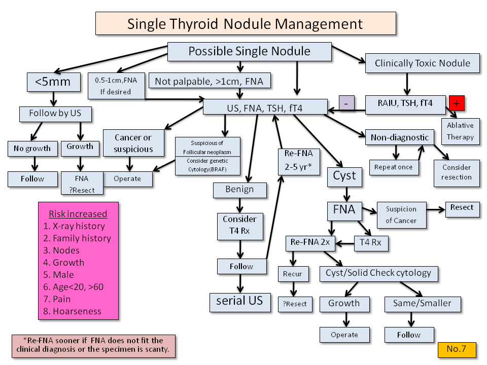 Single Thyroid Nodule Management - Thyroid Disease Manager Algorithms