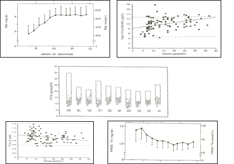 Figure 14-8 Upper left panel: pattern of changes in serum TBG concentrations (mean + sd) in 606 normal pregnant women ( Ref 1). Upper right panel: pattern of changes in serum total T4 concentrations (individual results) in 98 normal pregnancies ( Ref 86). Middle panel: free T4 measurements in 29 women in the 9th month of gestation, using equilibrium dialysis (ED), and 9 different immunoassays (EL: Elecsys; VD: Vidas; VT: Vitros ECi; GC: Gamma-Coat; IM: Immunotech; AD: Advantage; AX: AxSYM; AC: ACS: 180; AI: AIA Pack). The boxes show the non-pregnant upper and lower reference intervals. The percentages given in the upper part of the figure show the mean decrement (in percent) of serum free T4 values compared with the mean free T4 reference value for non-pregnant subjects, provided by the manufacturer. It can be seen that free T4 values were decreased by 40% when measured by ED, and by 17-34% depending on the immunoassay employed . Lower left panel: pattern of changes in serum free T4 concentrations (individual results) in 98 normal pregnancies in the USA, with an adequate iodine intake (Ref 86). Lower right panel: pattern of changes in serum free T4